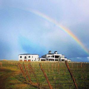 kitschWinery rainbow